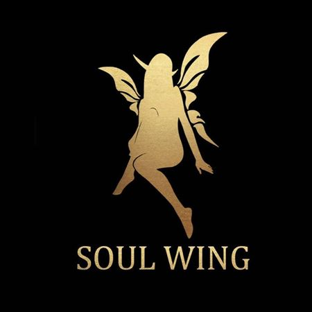 Picture for category SOUL WING
