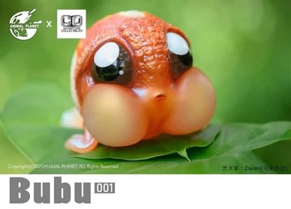 Picture of BuBu the cute gold fish 001